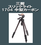 スリックライト-1704-中型カ.jpg