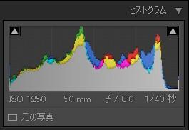 ヒストグラム.jpg