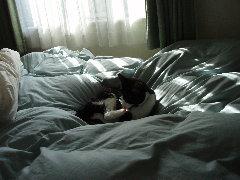 寝室で勝手にくつろぐく〜りん