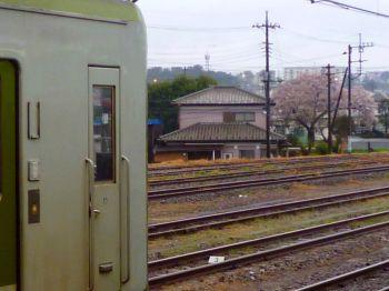 高麗川駅で遠くに桜