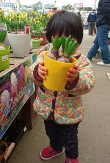 お花を買います