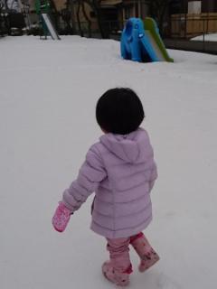 公園は除雪されてない