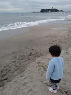 江ノ島を臨む海岸