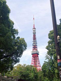 何年ぶり?東京タワー