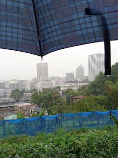 雨が続きます