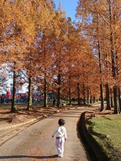 若宮公園にやって来ました