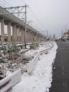 雪の朝でした