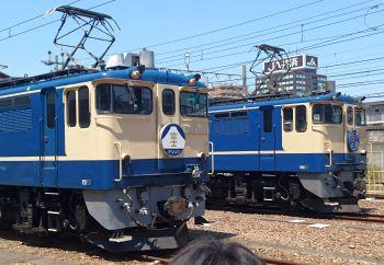 EF65国鉄色の並び