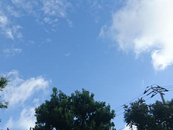 嵐の前の晴天