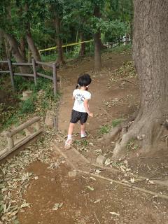 裏山で遊ぶ