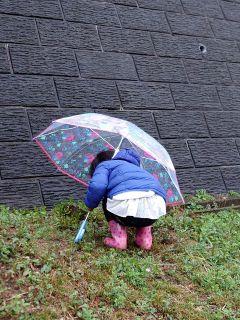 雨の中,買い物へ