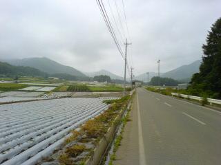 20050809_1049.jpg