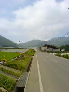 20050809_1052.jpg