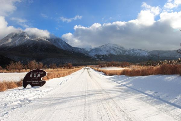 長者原の雪景色