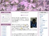 ・海好きっ子の磯釣り・サーフブログ!