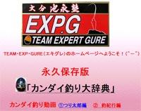 TEAM・EXP・GURE
