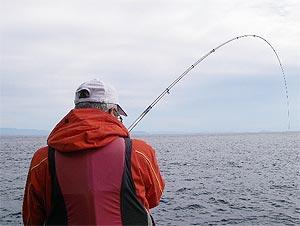 隣で釣っていた旦那も竿を曲げました。