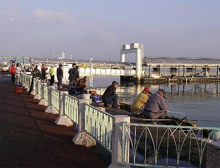 熊本新港のレストラン裏