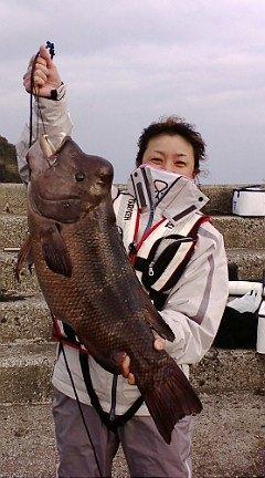 東京のいずみちゃん、カンダイ8.6kg