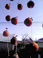 秋空の下・・・