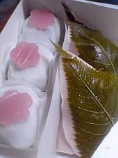 春を彩る〜和菓子