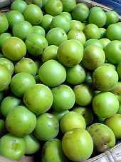今年も無農薬の梅を『農園さくら』さんから頂いてきた