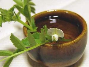 「ひよこ豆」の花が咲いた!