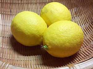 和歌山産のレモンです!