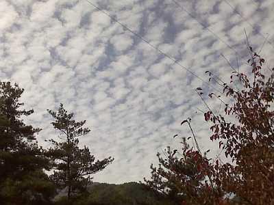 秋の空です!