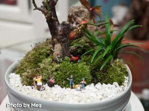 マン盆栽1