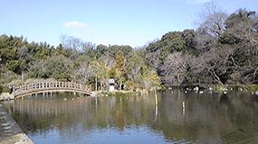子供の頃によく遊んでいた八景水谷公園です。