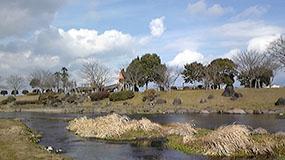 熊本の七城温泉近くにある公園…やはり水が澄んでいます。