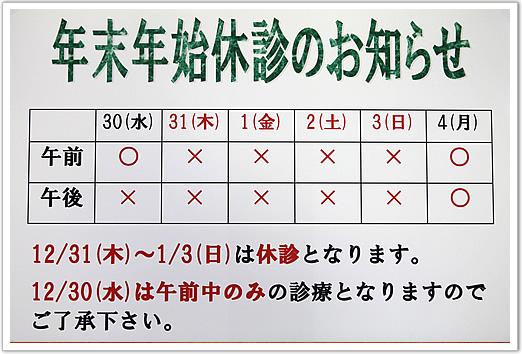 h271211_1.jpg