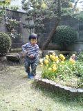 お庭:れい2