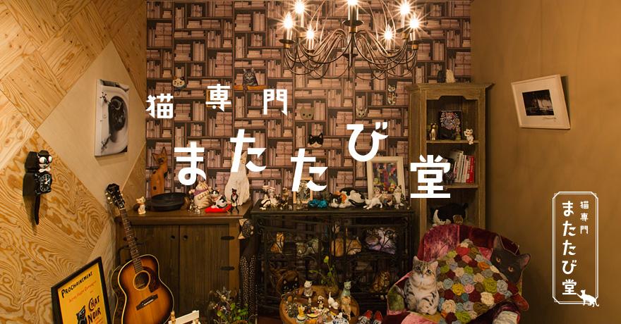 マタタビ堂画像.jpg