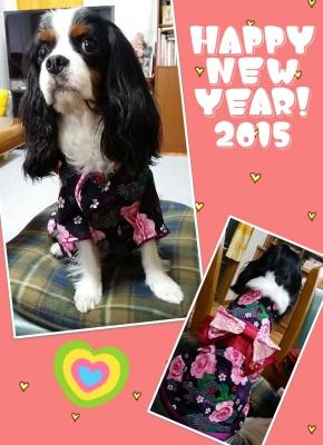 2015-01-01-12-11-52_deco.jpg