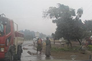 230811雨のアリューシャ