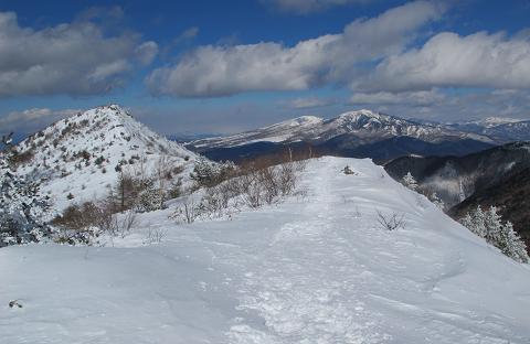 250210烏帽子岳稜線