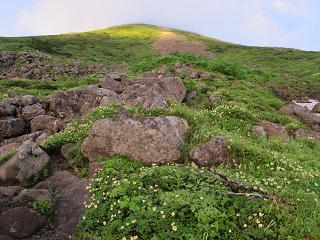 250822オプタテシケ山への登り