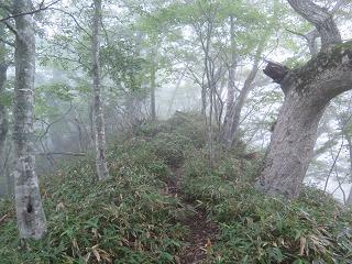 20150809楽古岳登り