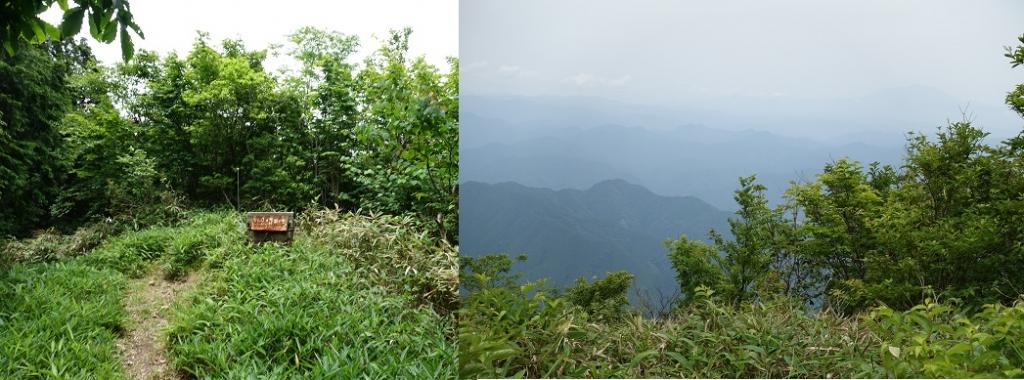 20200627瓢ヶ岳12.jpg