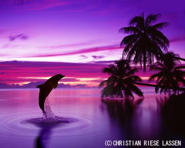 クリスチャン・ラッセンの画像 p1_4