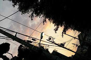 (PHOTO)たそがれ空見上げて