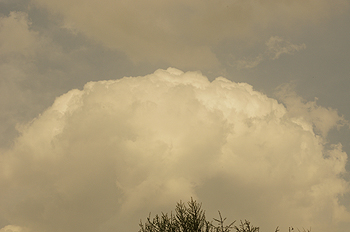(PHOTO)積乱雲