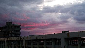 (PHOTO)朝焼けに染まる雲