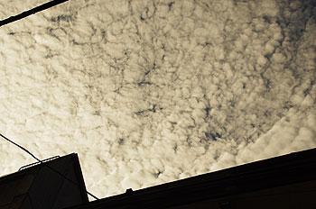 (PHOTO)雲の絨毯