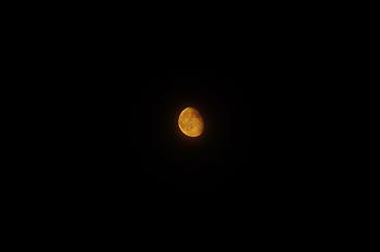 (PHOTO)濃い光の月