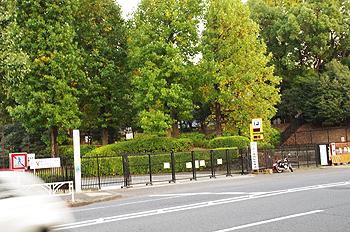 (PHOTO)封鎖されたままの代々木公園2