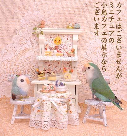 dada小鳥カフェ展示