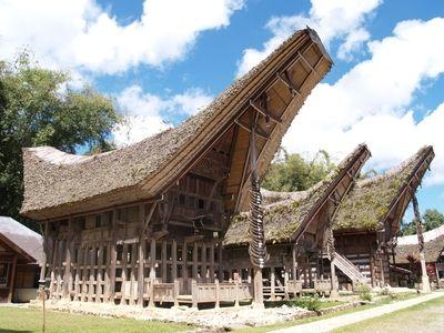 トンコナンと呼ばれる、トラジャの伝統建築